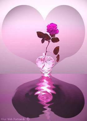 fleur d 39 amour l 39 amitie avec le soleil d 39 afrique m guelor. Black Bedroom Furniture Sets. Home Design Ideas